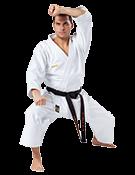 Каратэ в школе боевых искусств Демида Момота в ТК ЭКОПОЛИС premium